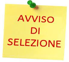 SELEZIONE CONFERIMENTO INCARICO EX ART 110 COMMA 1 DEL  D.LGS 267/2000- ELENCO AMMESSI ED ESCLUSI